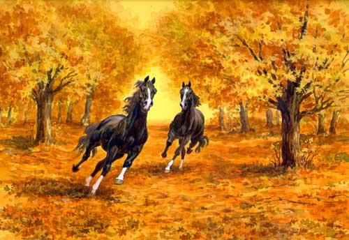 Рисунки лошадей - Мой Конь