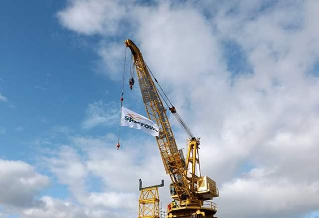 Sparrows group - rental cranes.jpg