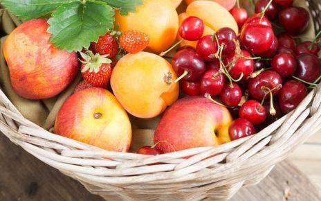 Hádanky ovoce