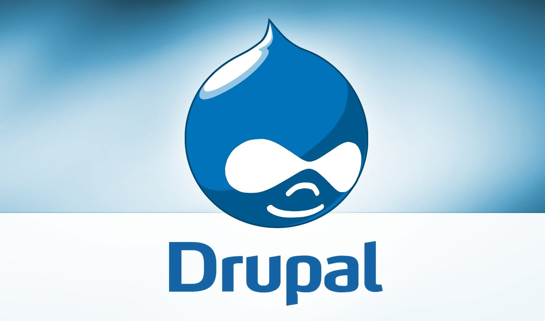 Customize Your Web Experience with Drupal