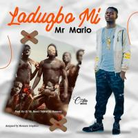[Music] Mr Mario - Ladugba Mi