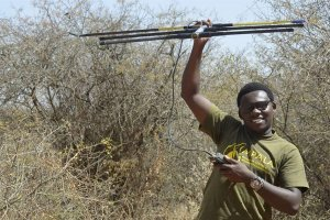 Dedan Ngatia, Project Manager of the Wild Dog and Cheetah Project