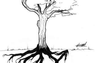 apertus_tree