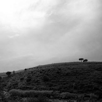 Beauté sauvage des paysages