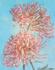 Artist: Stacy Frank - www.stacyfrank.com