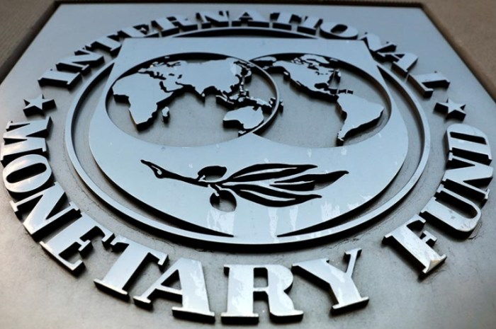 IMF Issues Warning Saying Cryptocurrencies Are Not Suitable As Legal Tenders