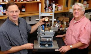 Новый метод получения химических соединений из биомассы получен в Университете Айовы в США