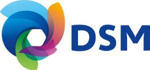 DSM Engineering Plastics