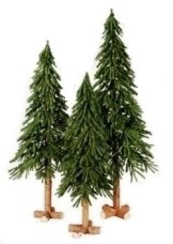 Ель Альпийская на деревянном пеньке