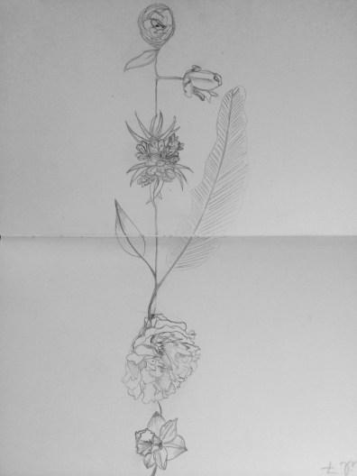 FlowersSketch
