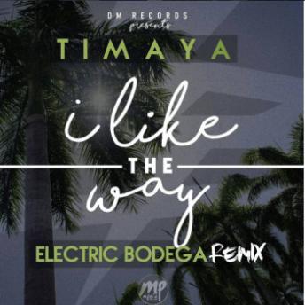 Timaya MP3: Timaya - I Like The Way (Electric Bodega Remix)  [@timayatimaya]