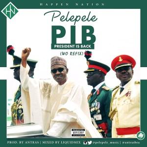 wo2-300x300 Pelepele - President Is Back (Wo refix)
