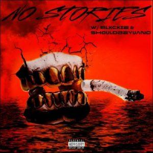 808 Sallie No Stories Mp3 Download