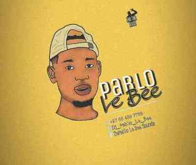 Pablo Le Bee 501 Personality Mp3 DownloadPablo Le Bee 501 Personality Mp3 Download