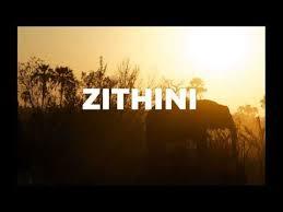 Mr Jazziq, Lady Du, Zuma & Busta 929 – Zithini (Prod. FIBBS) Mp3 download
