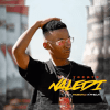 Tbeatza – Naledi Ft. Mabonzi K'phela Mp3 Download