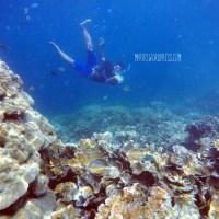 Pahawang & Tanjung Putus 'Surga Underwater' di Lampung