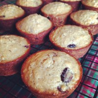 Morning Muffin Remix: Cranberry, Orange and Oatmeal Muffins