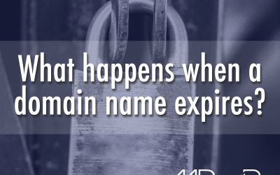 What happens when a domain name expires?