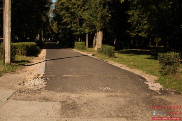 доріжки парк (36)
