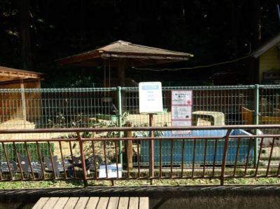 大牟田市動物園_ミニ列車があった場所