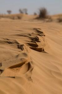 Wind brushed sand