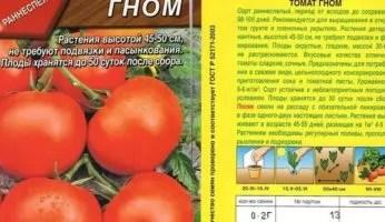 Томат Гном