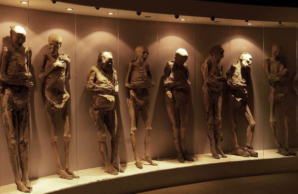 Momias en el Museo