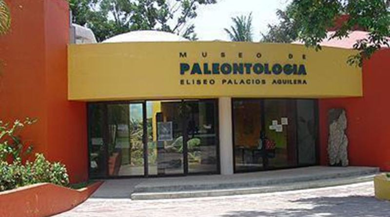 Museo de Paleontología Eliseo Palacios Aguilera
