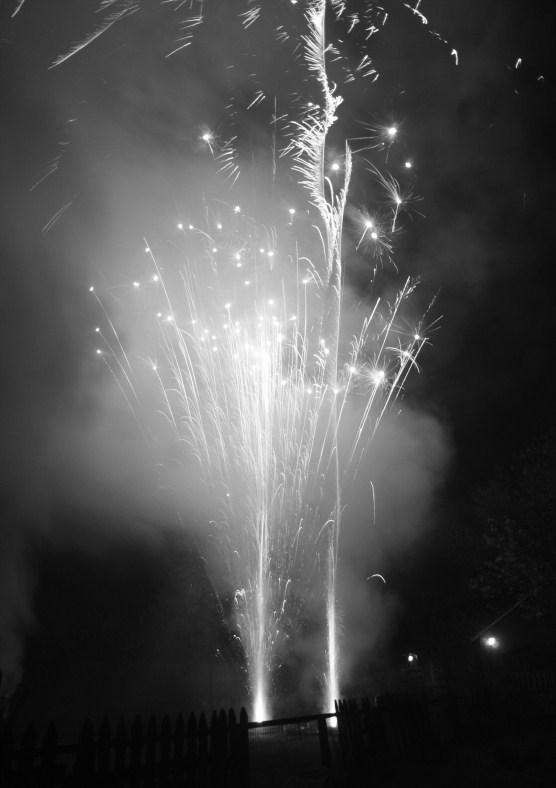Fireworks black and white 13