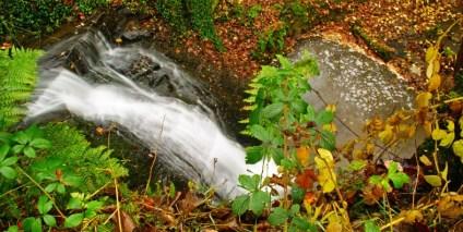 Kesterhole Waterfall 1