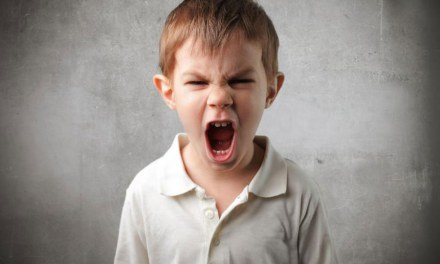D'où vient la colère et à quoi sert-elle?