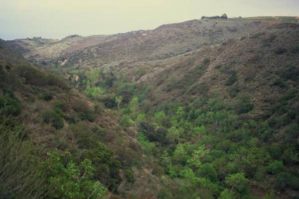 Escondido Canyon