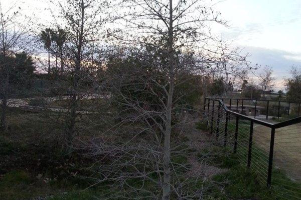 Winter at Compton Creek Natural Park at George Washington Elementary