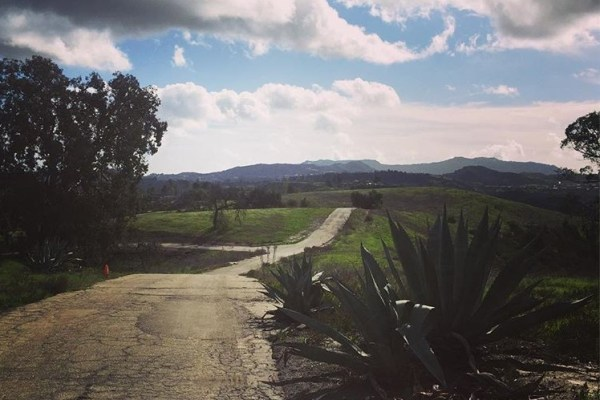 Upper Las Virgenes Open Space Preserve. Photo by Jessica Montanez