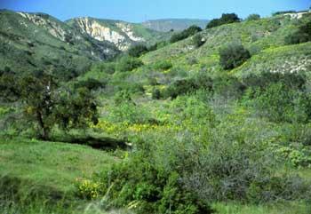 Happy Camp Canyon Regional Park