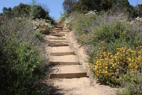 Staircase Franklin Canyon