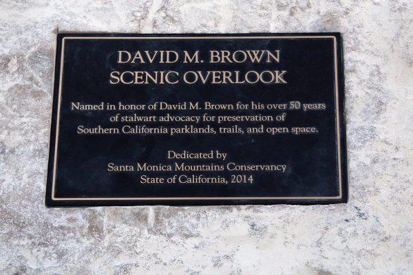 DAVID M. BROWN OVERLOOK