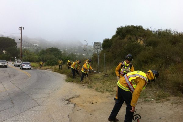 Mulholland Drive clean up
