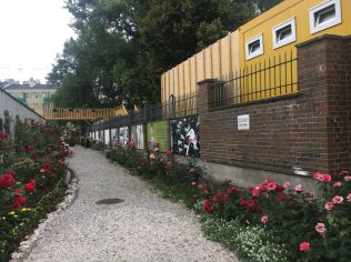 The rose garden at the Warsaw Uprising museum (photo by Natalie Bumpus)