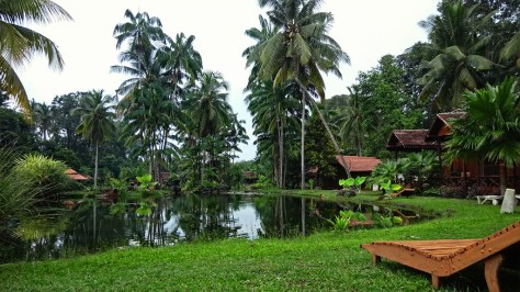 Tanjung Inn, Cherating Village (12)