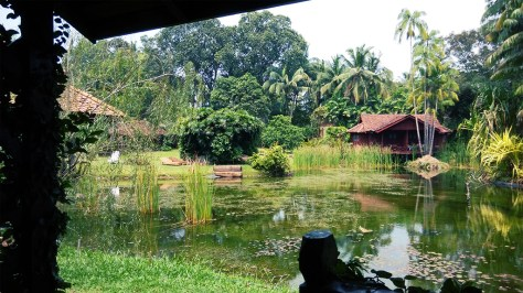 Tanjung Inn, Cherating Village (4)