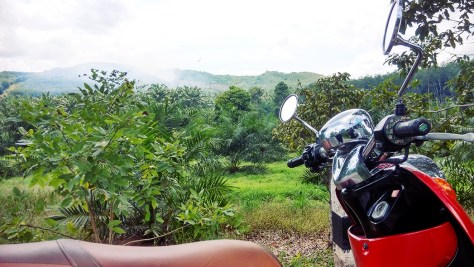 180-days-in-Thailand-travel-motorcycle (2)
