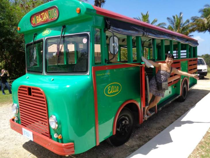 Things to do in Barbados-tour-bus-barbados