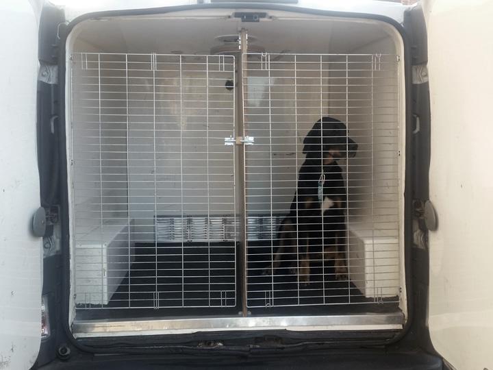 Model Joep showt de nieuwe veiligheidsdeuren in het achtercompartiment van de bus.