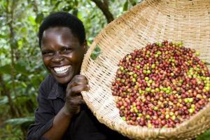 smiling basket beans guy
