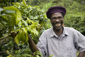 The farm of James Chirwa (not present), in the Lukalazi Zone, coffee growing region, Malawi. Farmer: Peter Banda