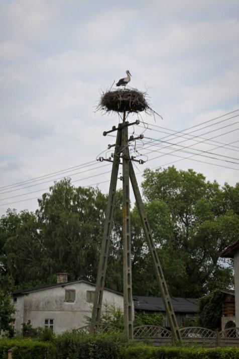 Poland2011 (45 of 82)