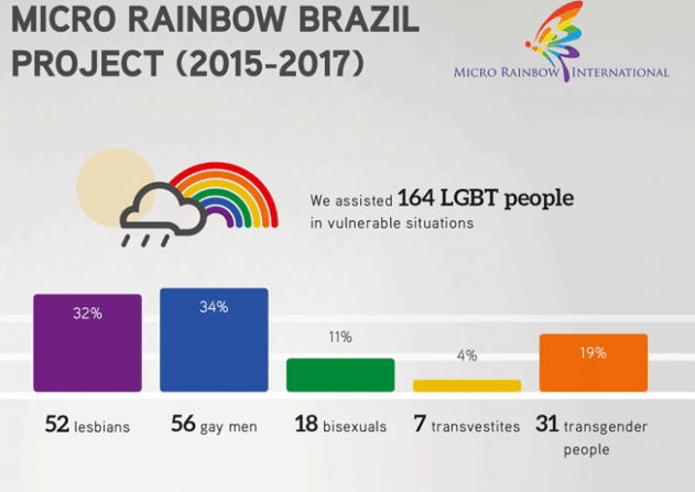 Infographic overview of the Brazil project from 2015 to 2017