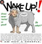 sheeple-1a